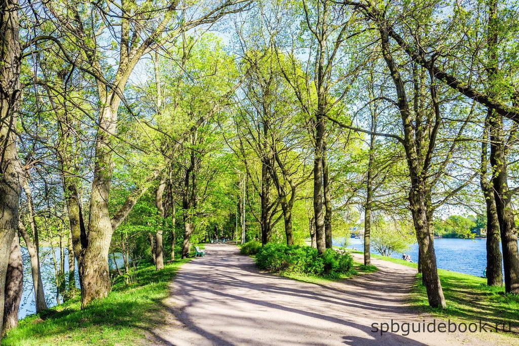 Елагиноостровский парк.