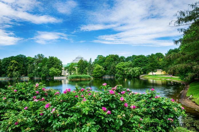 Таврический сад в Санкт-Петербурге.